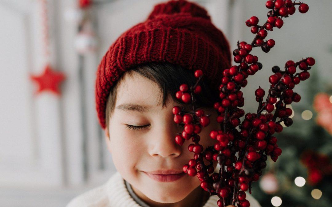 Mini Sesiones de Navidad 2019